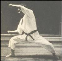 ЗАБЫТЫЕ УДАРЫ СЁТОКАН THE NEGLECTED 'PUNCHES' OF SHOTOKAN KARATE