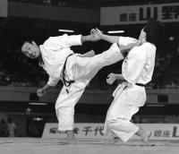 Интервью с Танакой Масахико (Зам. технического директора JKA, 8 дан)